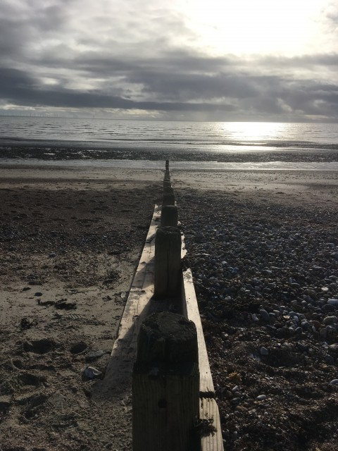 Wooden breakwater with think poles, sunk into the beach